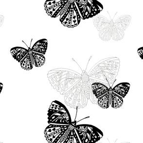 flutter_black