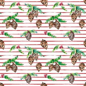 IBD pine cone Berry Striped 4x4