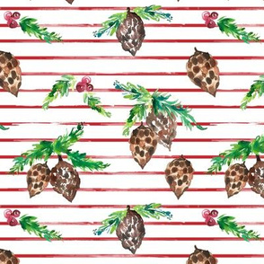 IBD pine cone Berry Striped 6x6