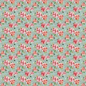 IBD Poinsettia berry 1.5x1.5