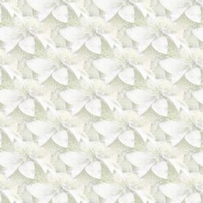 Heavenly Balm   White-on-White Floral Photo Print