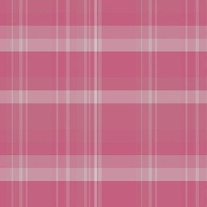 Warm Pink Plaid