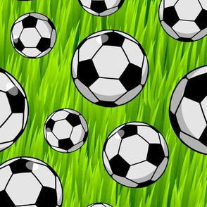 Soccer Balls Big and Small in Grass