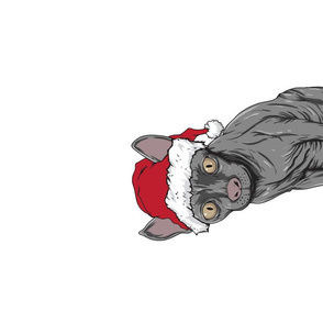 Tea Towel Santa Sphynx Cat