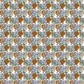 Floral Australian Shepherd bicolor portraits B - small