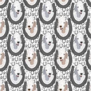 Bedlington Terrier horseshoe portraits