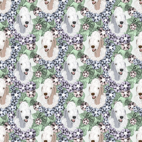 Floral Bedlington Terrier portraits