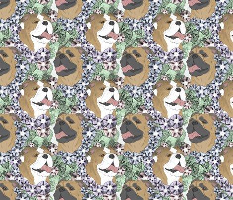 Rusticcorgibulldogfloralportraits3_shop_preview