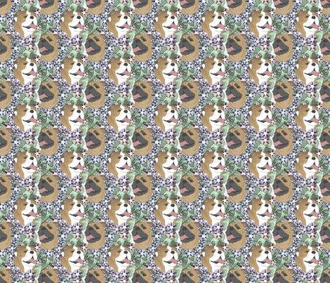 Rusticcorgibulldogfloralportraits3b_shop_preview