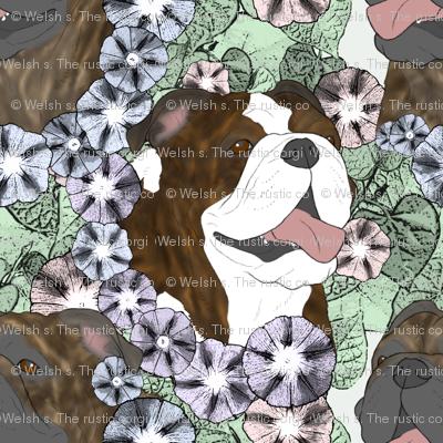 Floral Bulldog portraits D