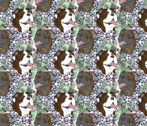 Rusticcorgibulldogfloralportraits5_shop_preview