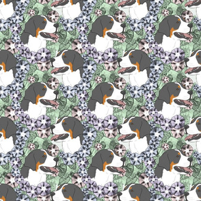 Floral Greater Swiss Mountain Dog portraits