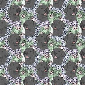 Floral black Labrador Retriever portraits