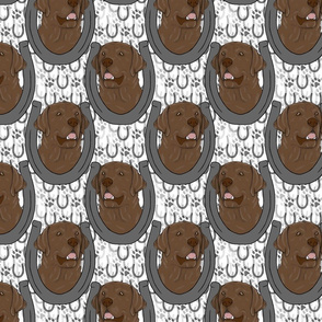 Chocolate Labrador Retriever horseshoe portraits