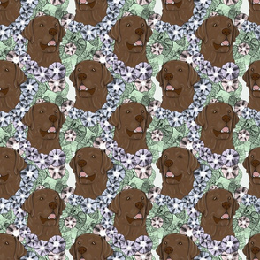 Floral chocolate Labrador Retriever portraits