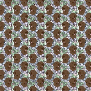 Floral chocolate Labrador Retriever portraits - small