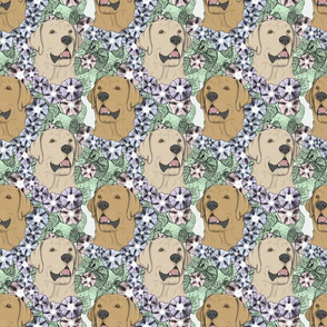 Floral yellow Labrador Retriever portraits