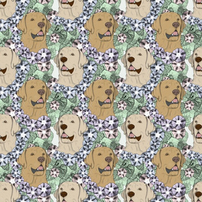Floral yellow Labrador Retriever portraits B
