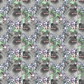 Floral Norwegian Elkhound portraits