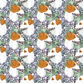 Floral Smooth coat Jack Russell terrier portraits