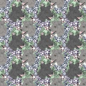 Floral Pumi portraits B