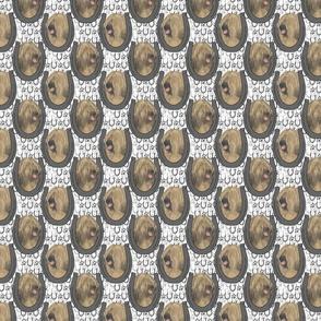Tibetan terrier horseshoe portraits B - small