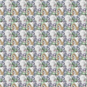 Floral Tibetan terrier portraits E - small