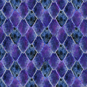 Dark Galaxy Gemstone Dragon Scales