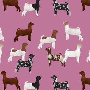 goat tile pink