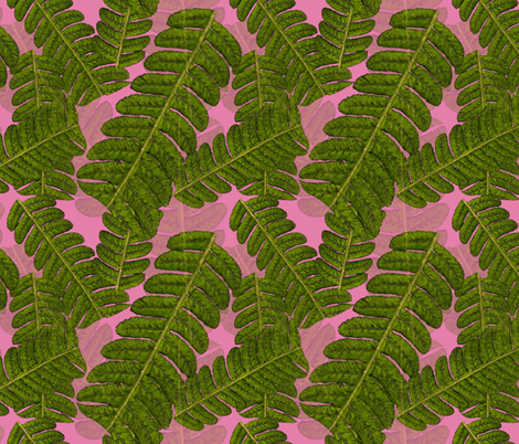 Leaf on Pink fabric by henry_&_florence on Spoonflower - custom fabric