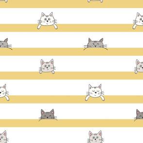 peekaboo kittens - yellow