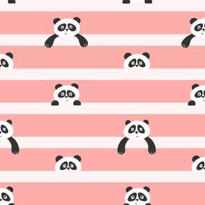 peekaboo panda - peach