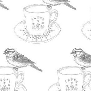 Sparrow on a tea cup