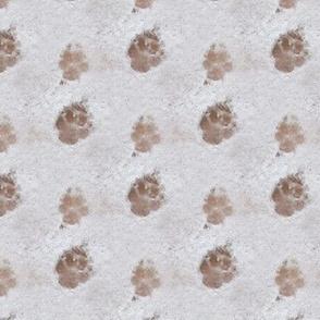 Pawprints in Snow | Seamless Photo Print