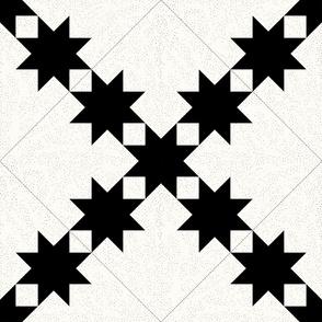 Star Trails Graphic Quilt: Black & Cream Cheater Quilt