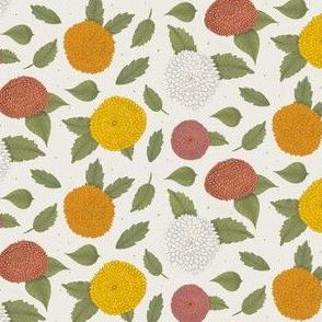 Dahlia Flower Collection