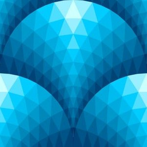 08096394 : faceted scales : naval