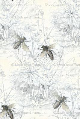 1840s Bees | Black + White