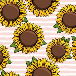 Sunflowers -  pink stripes