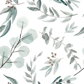 JUMBO Botanical Wallpaper Eucalyptus Australian Native Edition 1 Large Scale Wallpaper