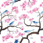 Rrrrrcherry-blossom-birds-copy_shop_thumb