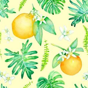 Citrus Tropics - light yellow