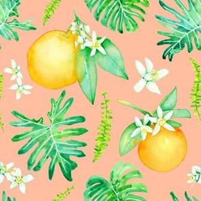 Citrus Tropics - pink