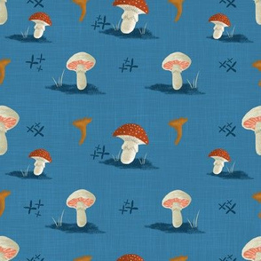 Mushroom-Blue