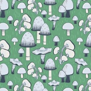 Mushrooms Everywhere