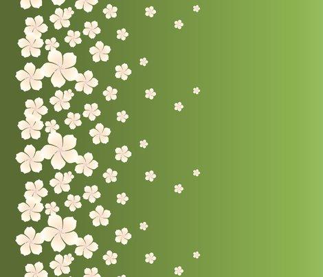 Ombre_sakura_ivory-green-01_shop_preview