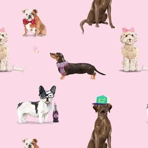 Dogs of Insta // Blush