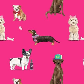 Dogs of Insta // Hot Pink