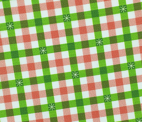Stitched Gingham* (Grass & Mona) || check star starburst stitching needlework checkerboard spring summer 70s retro vintage pastel coral picnic