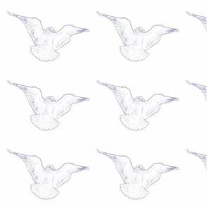 seagull pattern_1